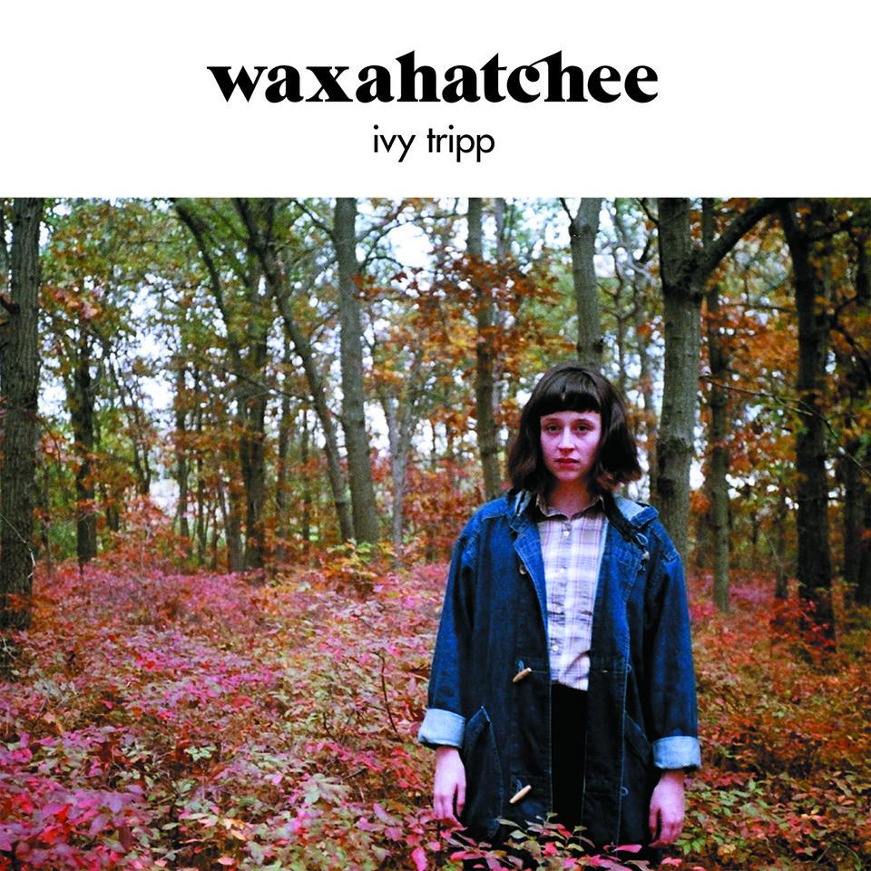 Ivy Tripp Download
