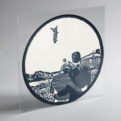 "7"" Vinyl Picture Disc - I Could Give You All That You Don't Want"