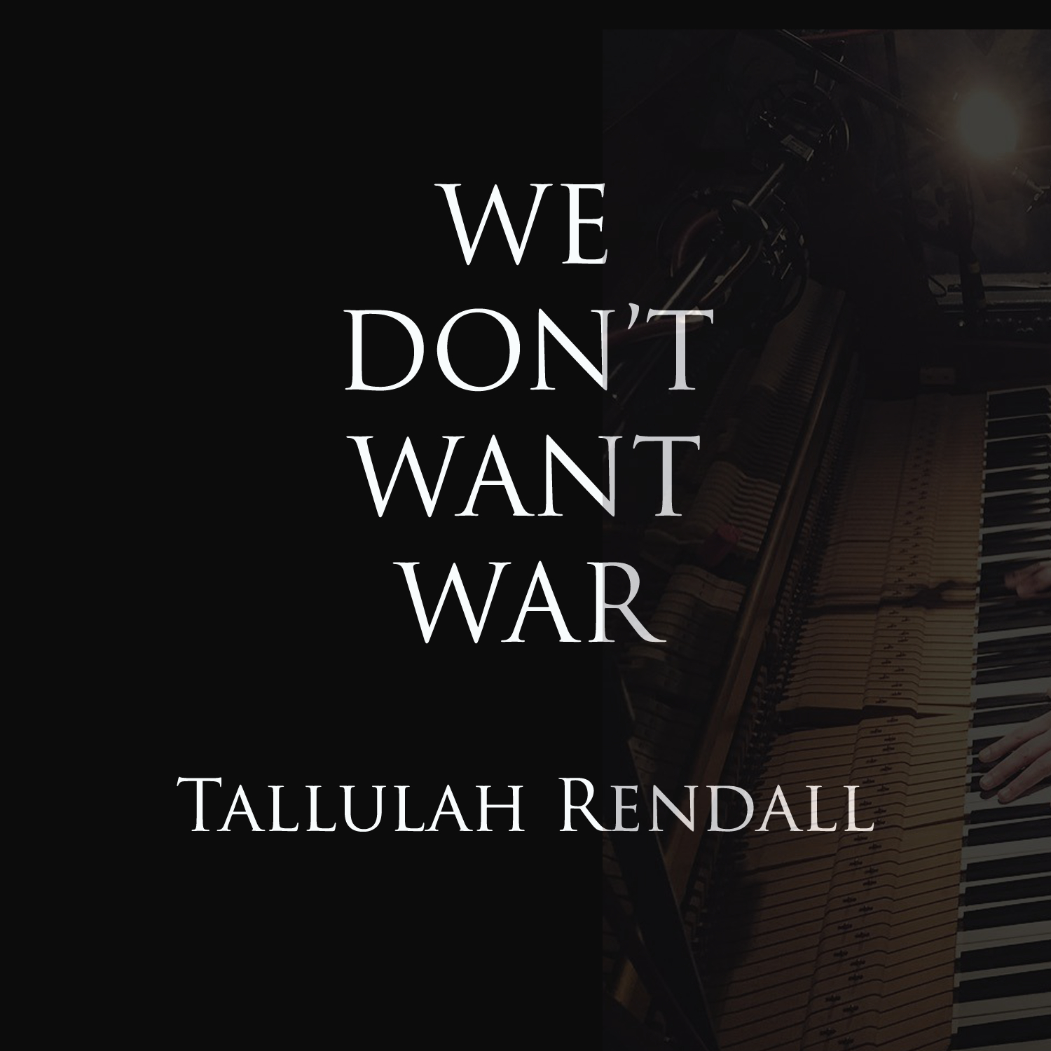 'We Don't Want War Anymore' Single