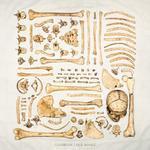 'Old Bones' EP (Digital Download)